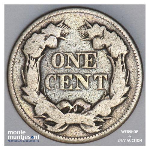 cent - flying eagle - United States of America/Circulation coinage 1858 (KM 85)